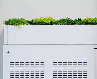 Kast-plantenbak